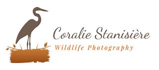 Coralie Stanisière